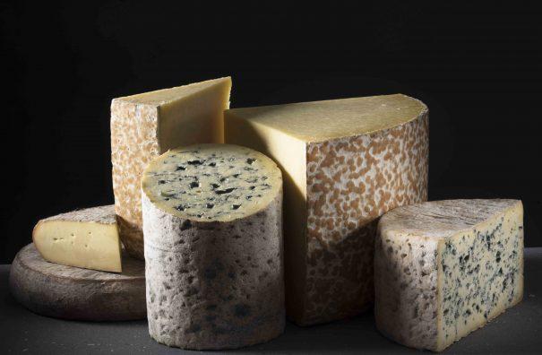 Exposition photo des Fromages AOP d'Auvergne au panoramique des dômes