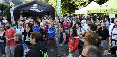 Partez à la rencontre des Fromages AOP d'Auvergne !