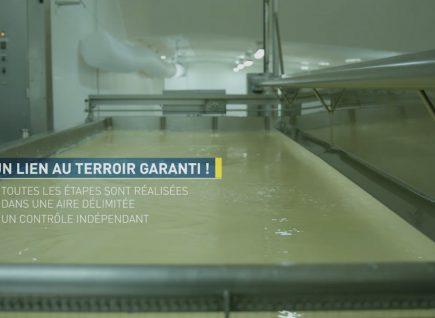 VIDEO : (Re)découvrez l'histoire de l'AOP Bleu d'Auvergne.