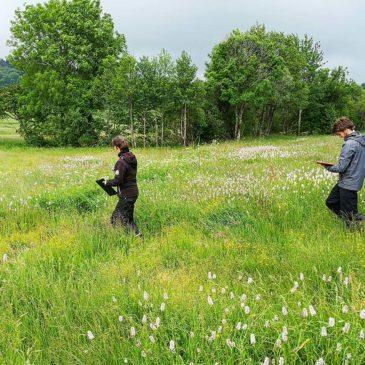 Projet pour une connaissance et reconnaissance des prairies naturelles de l'AOP Saint-Nectaire